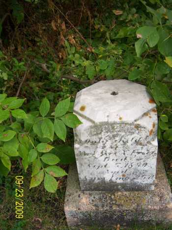 freer_lloyd_e_headstone.jpg