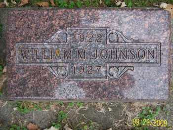 johnson_william_m_headstone.jpg